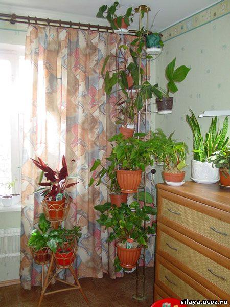 Подставка под растения своими руками фото 805